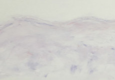 The Silent Mountains-75x200-Oil on Canvas